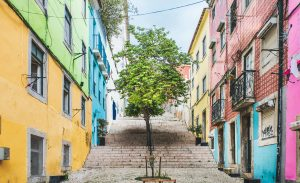 Maisons colorées et arbres à Lisbonne